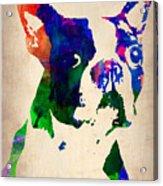 Boston Terrier Watercolor Acrylic Print