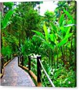 Botanic Gardens Trail Acrylic Print