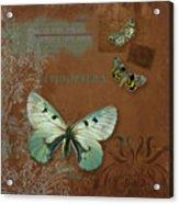 Botanica Vintage Butterflies N Moths Collage 4 Acrylic Print