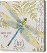 Botanical Dragonfly-jp3418b Acrylic Print