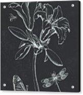 Botanique 3 Acrylic Print