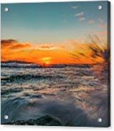 Botany Sunset Splash Acrylic Print