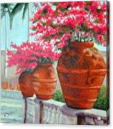 Bougainvillea Pots Acrylic Print