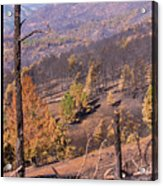 Boulder County Wildfire 5 Miles West Of Downtown Boulder Acrylic Print