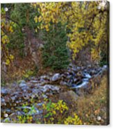 Boulder Creek Autumn View  Acrylic Print