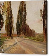 Boulevard Of Poplars Near Plankenberg Acrylic Print