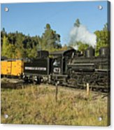 Bound For Durango Acrylic Print by Jerry McElroy
