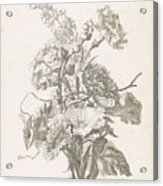 Bouquet Of Different Flowers, Jacques Bailly I, Ca. 1670 , Acrylic Print