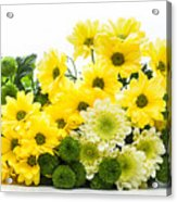 Bouquet Of Fresh Spring Flowers Isolated On White Acrylic Print