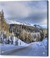 Bow Valley Parkway Winter Scenic Acrylic Print