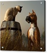 Boxer And Siamese Acrylic Print