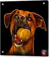 Boxer Mix Dog Art - 8173 - Bb Acrylic Print
