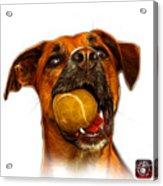 Boxer Mix Dog Art - 8173 - Wb Acrylic Print by James Ahn