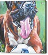Boxer Soccer Acrylic Print by Lee Ann Shepard