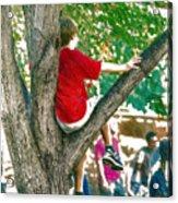 Boy In A Tree Acrylic Print