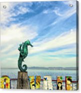 Boy On The Seahorse Acrylic Print