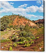 Bracchina Gorge Flinders Ranges South Australia Acrylic Print