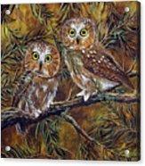 Branch Buddies Acrylic Print