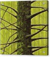 Branch Monster Acrylic Print