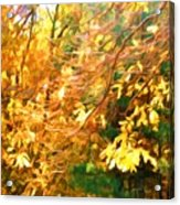 Branch Of Autumn Leaves Acrylic Print