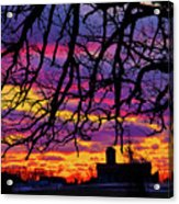 Branched Barn Acrylic Print