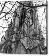 Branches Of Faith Acrylic Print