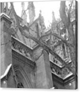 Branches Of Prayer Acrylic Print