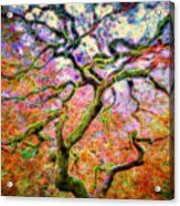 Branching Out In Autumn Neon Acrylic Print
