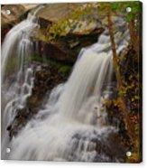 Brandywine Falls II Acrylic Print