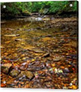 Brandywine Creek  Acrylic Print