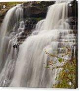 Brandywine Falls IIi Acrylic Print
