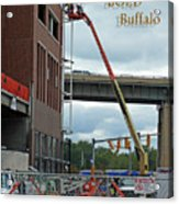 Brave Bold Buffalo Acrylic Print