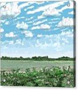 Brazoria County Field Acrylic Print