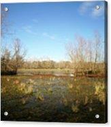 Brazos Bend Winter Wetland Acrylic Print