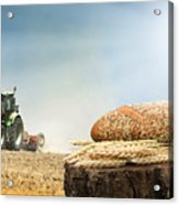 Bread And Wheat Cereal Crops.traktor On The Background Acrylic Print