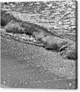Breaking Wave In Black And White Acrylic Print