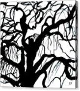 Breeze  Acrylic Print
