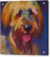 Briard Puppy Acrylic Print