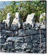 Briars And Stones New Quay Ireland County Clare Acrylic Print