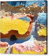 Brick In Sun Acrylic Print
