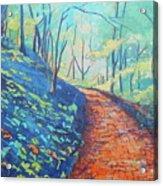 Brick Walk Acrylic Print