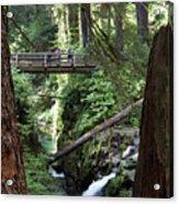 Bridge At Sol Duc Fall #1 Acrylic Print