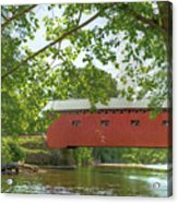 Bridge At The Green - Widescreen Acrylic Print