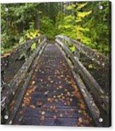 Bridge In A Park Acrylic Print