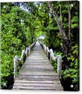 Bridge In Kosrae Acrylic Print