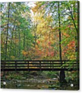 Bridge In The Forest Acrylic Print