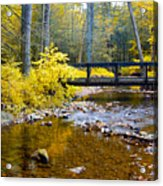 Fall Creek Acrylic Print