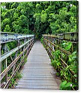 Bridge To Bamboo Forest Acrylic Print