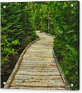 Bridge To Chimney Pond Acrylic Print