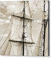 Brigantine Tallship Fritha Sails And Rigging Acrylic Print by Dustin K Ryan